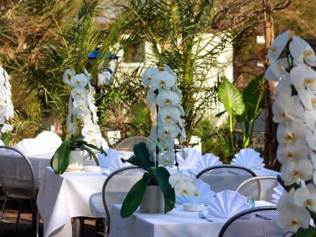Cafe Restaurant Karlshöhe: Unsere Terrasse