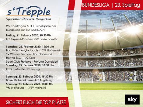FUSSBALL   1. BUNDESLIGA   23.Spieltag