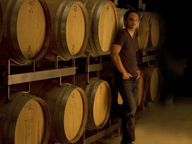 Weingut Sankt Annagarten: Verkaufsraum und Weinkeller