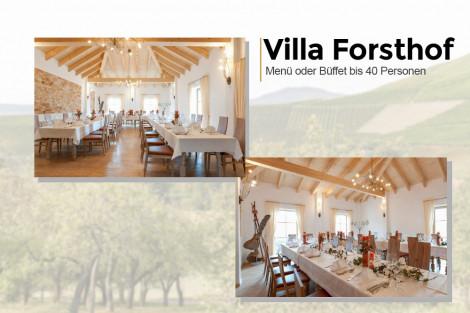Unsere Villa Forsthof